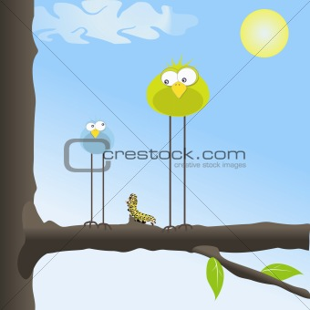 Two funny birds in the tree with a caterpillar