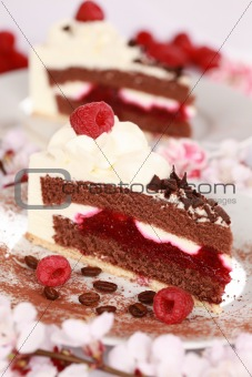 Cream tart with raspberries