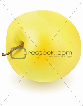 Fresh yellow apple