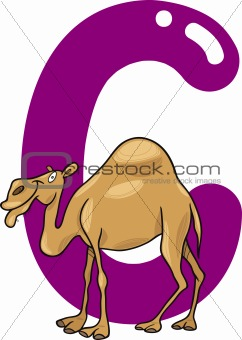 C for camel