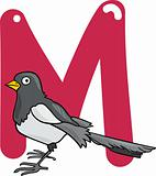 M for magpie
