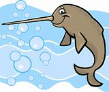 cartoon narwhal