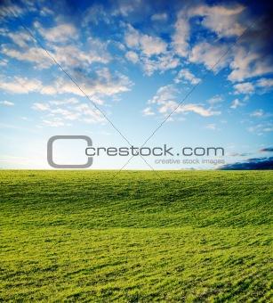 green field on sunset