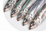 The heads of raw mackerel on a plate. On a white background.
