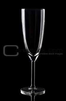 Champaign glass over black background. Studio shot.