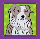 Australian Shepherd Cartoon
