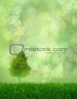 Green grass spring tree fantasy