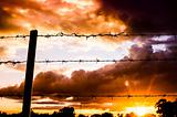 Barbed wire fence and the sun