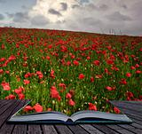 Creative concept image of poppy field landscape coming out of pa