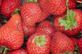 Background of fresh ripe strawberries in rustic basket