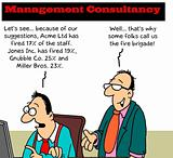 Management consultant
