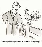 Rooster agreement