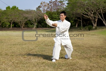 man in a kung fu position