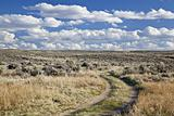 sagebrush high desert in Wyoming