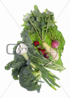 Fresh Farm Organic Vegetables