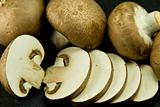 many small portabello mushrooms, also known as chestnut mushroom