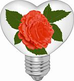 Bulb in the form of heart and in it a red rose