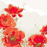 Background with flowers of poppy