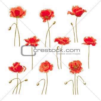 Set of 9 poppy flower