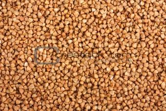 Background of the buckwheat