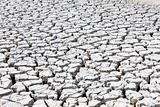 dry land, Parc Regional de Camargue, Provence, France