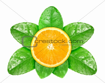 Orange fruit on green leaf with dew