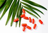 pills and the green leaf on a white background