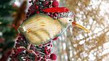 New Zealand kiwi Christmas decoration