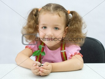 Portrait of the lovely girl with a small green plant in palms, o