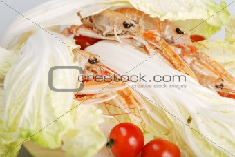 Prawns isolated on white