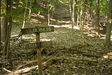 Wilderness Trail Sign 2
