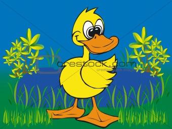 Toonimal Duck-Vector
