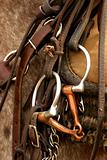Cowboy saddle gear