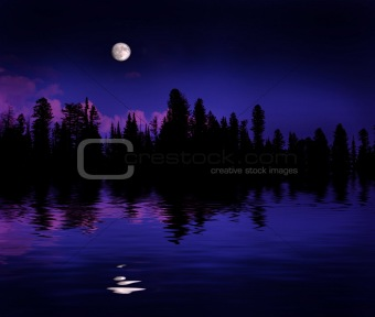 Forest Moonrise