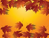 Maple Leaves in Fall Illustration