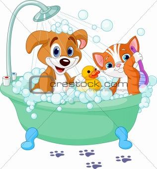 Dog and Cat  having a bath