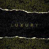 Luxury wallpaper original seamless torn edges