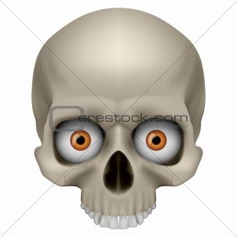 Freaky Human Skull