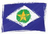 Grunge Mato Grosso flag