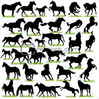 32 Horses Silhouettes Set