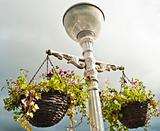 Original lamp post with hanging plants