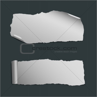 Ripped pieces of paper