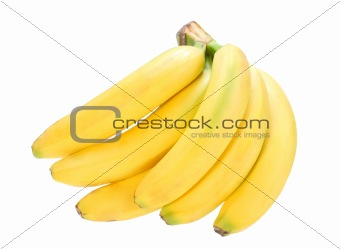 bunch of yellow fresh bananas