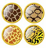 The set of the buttons of animal skins