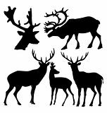 The set of the silhouettes of the deer