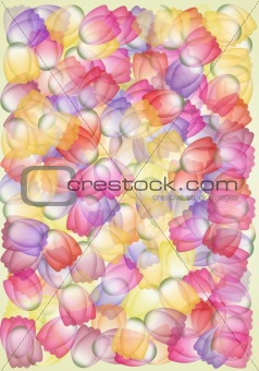 Whimsical multicolored tulips