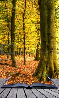 Vibrant Autumn Fall forest landscape coming out of magic book