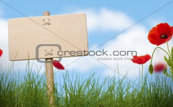 blank wooden sign in nature