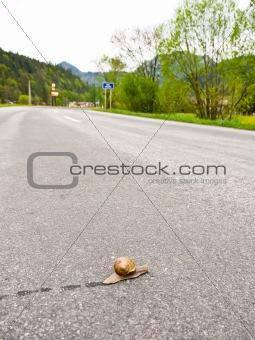 Slug the traveler