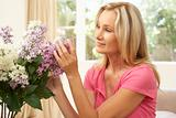Woman At Home Arranging Flowers